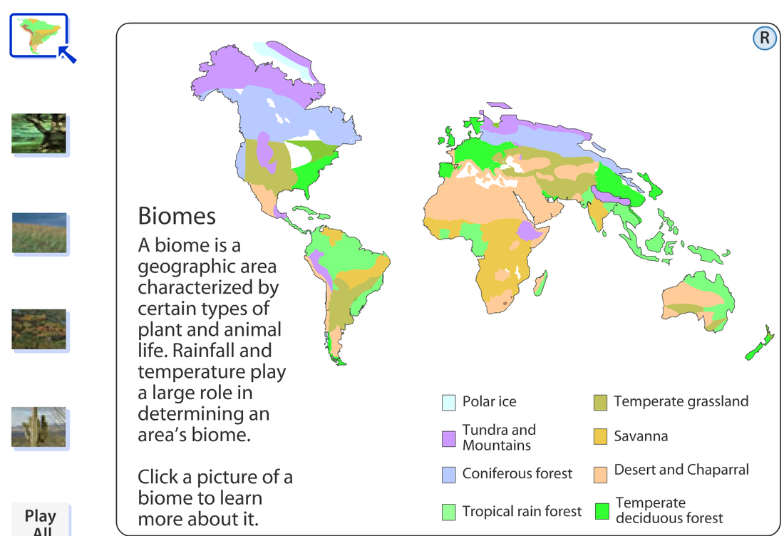 Habitats picture world map biomes gumiabroncs Images